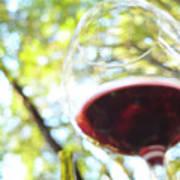 Wine On The Farm Art Print