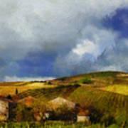 Wine Vineyard Art Print