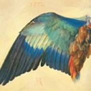 Wing Of A Blue Roller 1512 Art Print