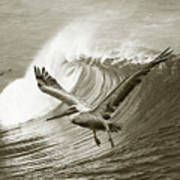 Wings And Waves Bw Art Print