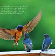 Wings Art Print by Diane E Berry