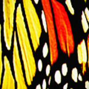 Wings Of A Monarch Butterfly Abstract Art Print