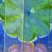 Wino Distribution Flowers  Id 16165-110050-45211 Art Print