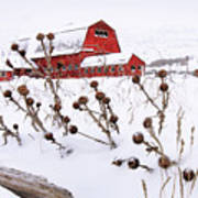 Winter Barn 2 Art Print