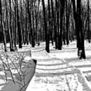 Winter Boardwalk In Black And White Art Print