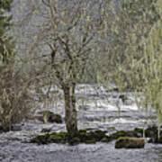 Winter Colors On The Klawock Art Print