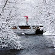 Winter Crossing Art Print