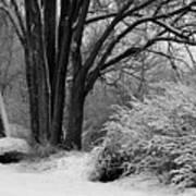 Winter Day - Black And White Art Print