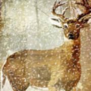 Winter Game Deer Art Print