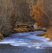 Winter Gold On The Yakima River Art Print
