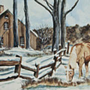 Winter Grazing  Art Print by Charlotte Blanchard