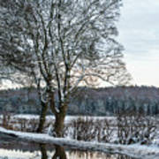 Winter In England, Uk Art Print