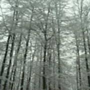 Winter In Germany Art Print