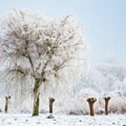 Winter In Holland Art Print