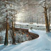 Winter In Pavlovsk Park Art Print