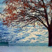 Winter In Peachland Art Print