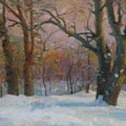 Winter In The Wood Art Print
