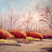 Winter Landscape Dry Creek Bed Art Print
