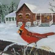 Winter Male Cardinal Art Print
