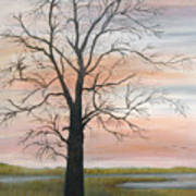 Winter Mood Art Print by Shirley Lawing