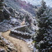 Winter Mountain Path Art Print