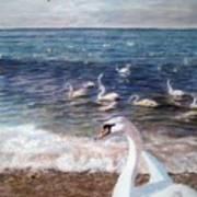 Winter On A Beach In Feodosiya. Crimea Art Print