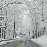 Winter On Buffalo Road Art Print