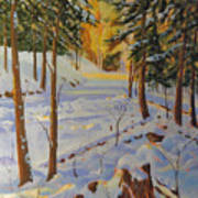Winter On The Lane Art Print
