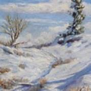 Winter Path Art Print by Debra Mickelson