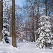 Winter Perfection Art Print
