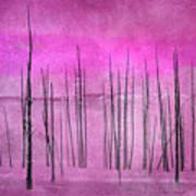 Winter Pink  7913pink Art Print