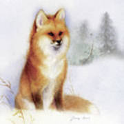 Winter Red Fox Art Print