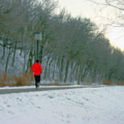 Winter Run Art Print