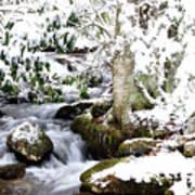 Winter Rushing Stream Art Print