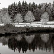 Winter Scene 3 Art Print