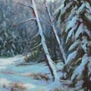 Winter Silence Art Print by Debra Mickelson