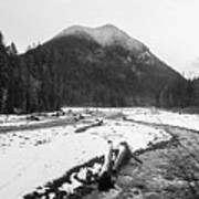 Winter Snow, Carbon River, Washington, 2016 Art Print
