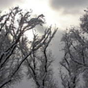 Winter Solstice Utah Art Print