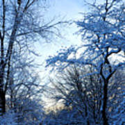 Winter Sunrise II Art Print