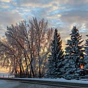 Winter Colors. Art Print