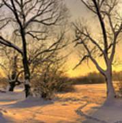 Winter Sunset Art Print by Jaroslaw Grudzinski