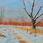 Winter Trail Carter Art Print