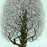 Winter Tree 2009 Art Print