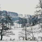 Winter Trees Solitude Landscape Art Print