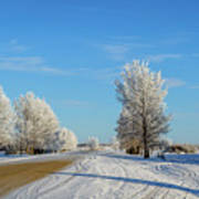 Winter In Saskatchewan Art Print