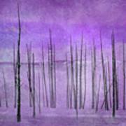 Winter Violet  7913violet Art Print