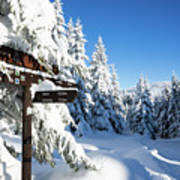winter way in the Upper Harz Art Print