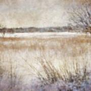 Winter Wonderland II Art Print