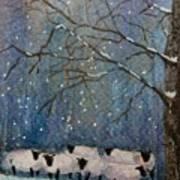 Winter Wool  Art Print