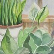 Wintergarten Art Print